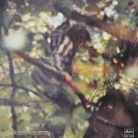 Purchase Claudio Rocchi - Essenza (Vinyl)