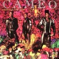 Purchase Cameo - Emotional Violence