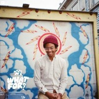 Purchase Toro Y Moi - What For?