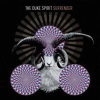 Purchase The Duke Spirit - Surrender (CDS)