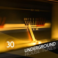 Purchase VA - 30 Underground House Tunes CD2