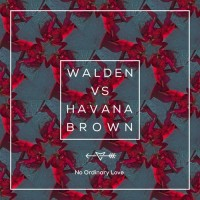 Purchase Walden Vs. Havana Brown - No Ordinary Love (CDS)
