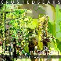 Purchase Crushed Beaks - Breakdown (EP)