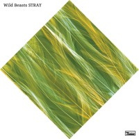 Purchase Wild Beasts - Stray (CDS)