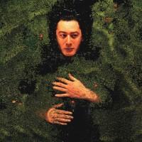 Purchase Alain Bashung - L'essentiel Des Albums Studio: Fantaisie Militaire CD9