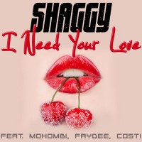 Purchase Shaggy - I Need Your Love (CDS)