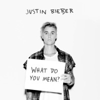 Purchase Justin Bieber - What Do You Mean? (CDS)
