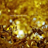 Purchase Small Brown Bike - Fell & Found