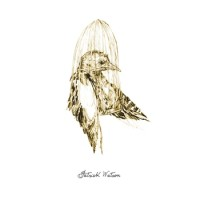 Purchase Patrick Watson - Big Bird In Small Cage (EP)