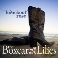Purchase The Boxcar Lilies - Knockout Rose