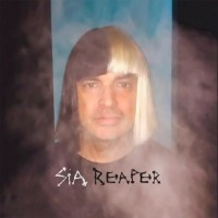 Purchase SIA - Reaper (CDS)