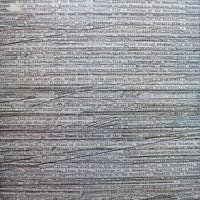 Purchase Birdsongs Of The Mesozoic - Magnetic Flip (Vinyl)