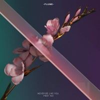 Purchase Flume - Never Be Like You (Feat. Kai) (CDS)