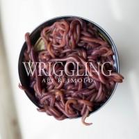 Purchase Abi Reimold - Wriggling