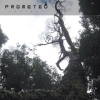 Purchase Prometeo - Contact