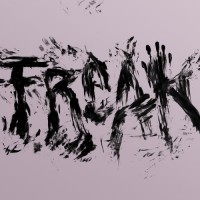 Purchase Ellen Allien - Freak (VLS)