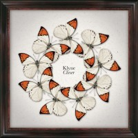 Purchase Klyne - Closer (CDS)