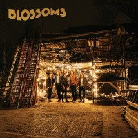 Purchase Blossoms - Blossoms