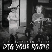 Purchase Florida Georgia Line - Dig Your Roots