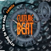 Purchase Culture Beat - Crying In The Rain (Remix) (MCD)