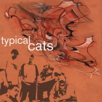 Purchase Typical Cats - Typical Cats