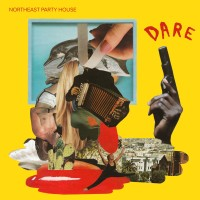 Purchase Northeast Party House - Dare