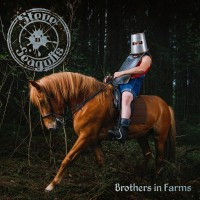 Purchase Steve 'n' Seagulls - Brothers In Farms