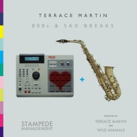 Purchase Terrace Martin - 808S And Sax Breaks