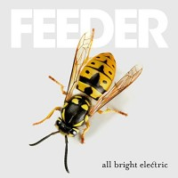 Purchase Feeder - All Bright Electric