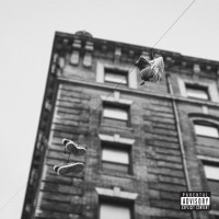 Purchase Apollo Brown & Skyzoo - The Easy Truth