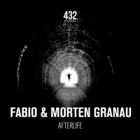 Purchase DJ Fabio & Morten Granau - Afterlife (CDS)