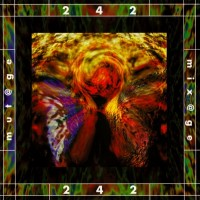 Purchase Front 242 - Mut@ge.Mix@ge