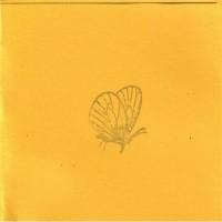 Purchase Brian Borcherdt - The Moth (EP)