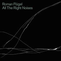 Purchase Roman Flugel - All The Right Noises