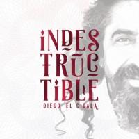 Purchase Diego El Cigala - Indestructible