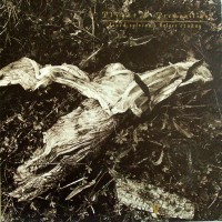Purchase David Sylvian - Plight & Premonition (With Holger Czukay)