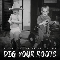 Purchase Florida Georgia Line - Dig Your Roots (CDS)