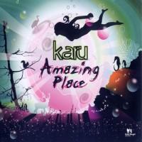 Purchase Karu - Amazing Place