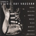Buy VA - A Tribute To Stevie Ray Vaughan Mp3 Download