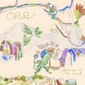Buy Chris Robinson Brotherhood - Barefoot in the Head Mp3 Download