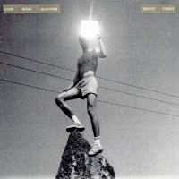 Purchase Mount Kimbie - Love What Survives