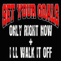 Purchase Set Your Goals - Only Right Now & I'll Walk It Off (CDS)