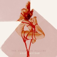 Purchase Asaf Avidan - The Study On Falling (CDS)