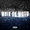 Buy Eminem - Walk On Water (CDS) Mp3 Download