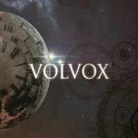 Purchase Volvox - Volvox