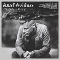 Purchase Asaf Avidan - The Study On Falling