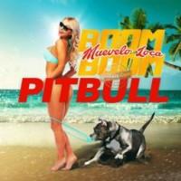 Purchase Pitbull - Muevelo Loca Boom Boom (CDS)