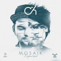 Purchase Camo & Krooked - Mosaik Remixed