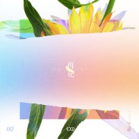 Purchase Exid - (Re:flower) Project #2