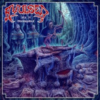 Purchase Avulsed - Altar Of Disembowelment
